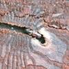 Небезпечний шкідник жук-короїд: що він собою являє і як з ним боротися?