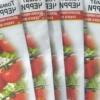 Особливості вирощування насіння томатів