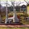 Підготувати дерева і чагарники до зими