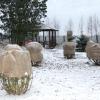 Підготовка декоративних чагарників і садових рослин до зими