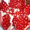 Корисні і лікувальні властивості фрукта граната