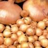 Правильне зберігання насіння цибулі, зберігання цибулі-севка
