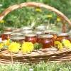 Рецепти з кульбаб: вино, варення з кульбаб, салат та інші страви