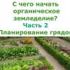 З чого почати органічне землеробство? частина 2. планування грядок на городі