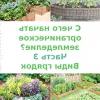 З чого почати органічне землеробство? частина 3. види грядок