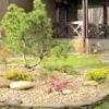 Сад в японському стилі. стиль бонсай