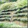 Садовий інтер'єр