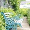 Лавки в саду: колекція ідей