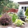 Створюємо композицію саду: поради ландшафтного дизайнера