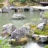 Види штучних водойм у ландшафтному дизайні