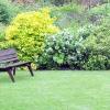 Виростити гарний газон: новинки насіння