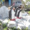 Опудало, вироби з пляшок, шин та інші саморобки для городу своїми руками