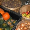 Як підготувати приміщення для зберігання врожаю фруктів і овочів