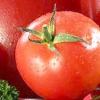 Помідор - це овоч чи фрукт або кілька секретів звичного помідора