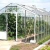 Теплиця для дачі, що використовувати для укриття овочів