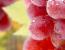 Полив винограду і його підв'язка або як пару відер води можуть збільшити врожайність виноградника в кілька разів